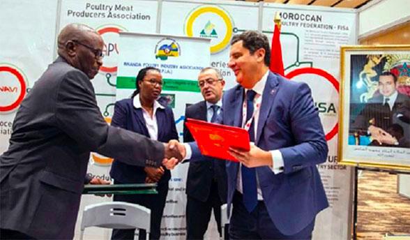 Maroc-Rwanda: Renforcer la coopération dans l'industrie avicole